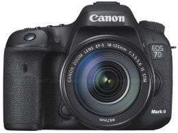 Canon EOS 7D Mark II photo 1