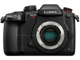 Panasonic Lumix DC-GH5S photo 1