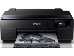EPSON Sure Color SC-P600 photo 1